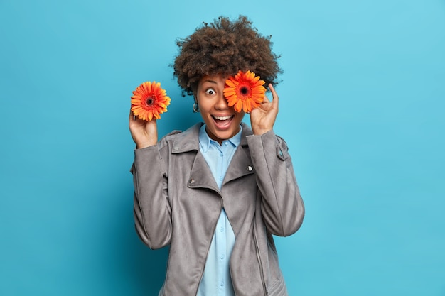 Happy young woman with curly hair covers eyes with orange gerberas smiles gladfully dressed in grey jacket has playful mood isolated over blue wall