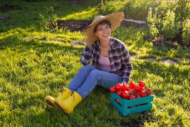 麦わら帽子をかぶった勤勉な若い女性の庭師は、晴れた夏にトマトの収穫箱を拾います
