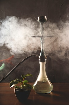 Harmful habit of smoking a hookah in a bar for relaxation concept.