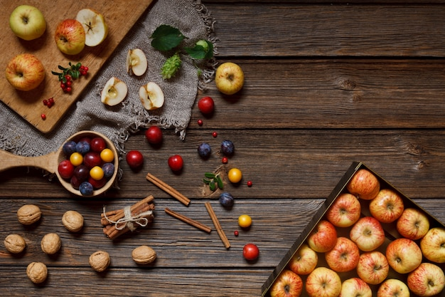 Harvest festival - fresh juicy apples, wild cherry plums, honey and walnuts