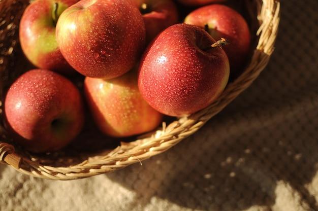 赤い熟したリンゴがたくさん入ったストローバスケットで収穫します。コピースペースで洗った新鮮な果物