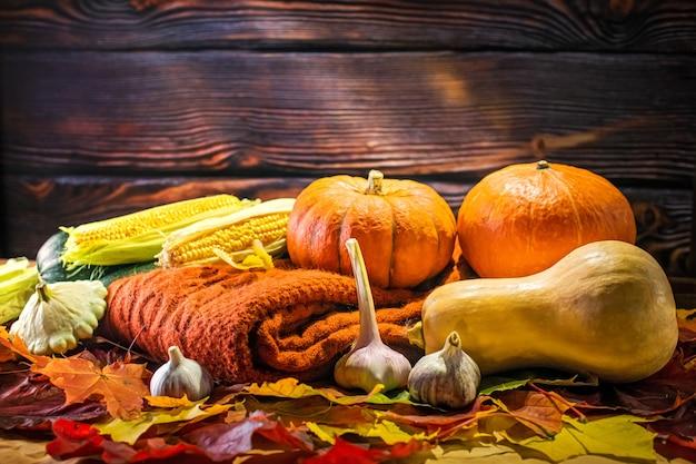 Сбор осенних овощей. концепция естественной эко еды. праздник урожая.