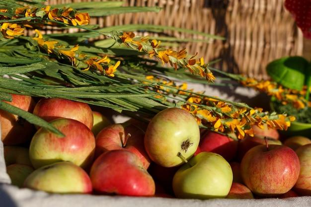 おいしい熟したリンゴの収穫は、明るい太陽の下でバスケットにあります