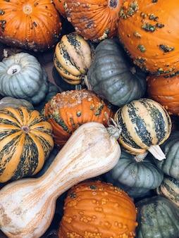 新鮮な有機カボチャの収穫。カラフルなカボチャとバスケットの上面図。ガーデニングのコンセプト。健康的な食事。
