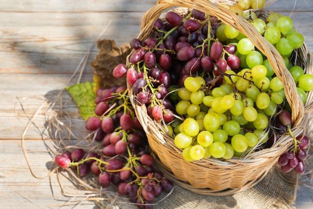 バスケット秋に新鮮な有機ワイン用ブドウを収穫