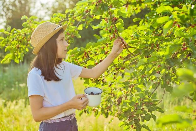 정원에서 뽕나무를 수확합니다. 여름 화창한 날 배경인 뽕나무 한 잔에 딸기를 찢는 여자 아이. 건강한 천연 비타민 식품