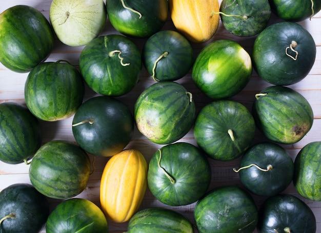 Урожай спелых арбузов фермер органический био