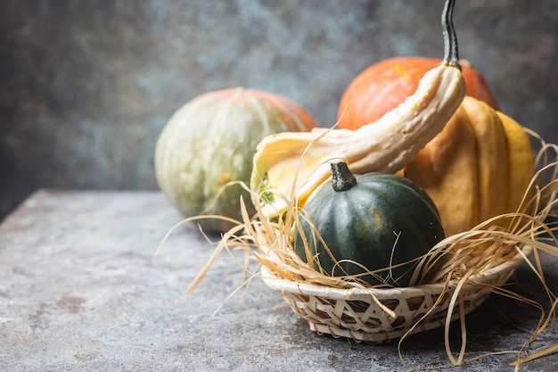 Harvest of raw pumpkins in a basket on table