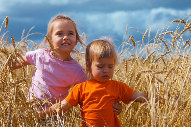 収穫:熟した小麦は畑で育ちます。金色の穀物と子供たちが歩いています。草の中の女の子