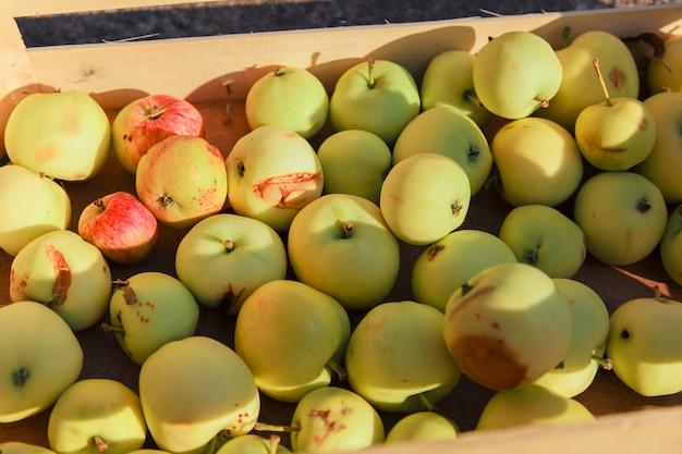 Урожай: белые яблоки в деревянном ящике.