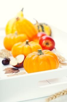 Собранные тыквы с осенними листьями и овощами на белом