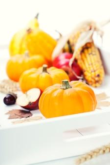 秋の葉と白の野菜と収穫されたカボチャ