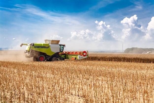 穀物を収穫しながら畑で収穫機