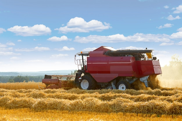 The harvester is bulk harvested grain
