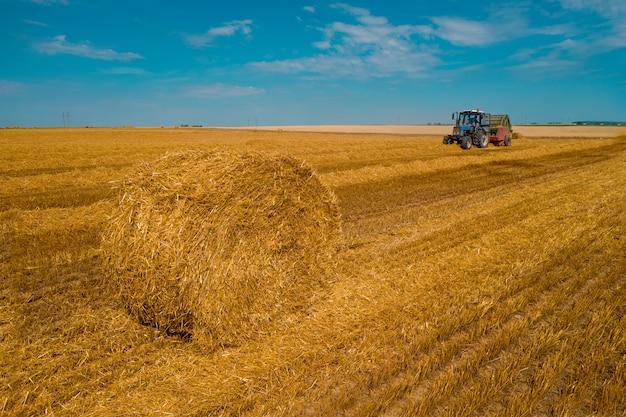 小麦畑作業を収穫する収穫機。黄金の熟した麦畑を収穫するハーベスタ農業機械を組み合わせます。農業。