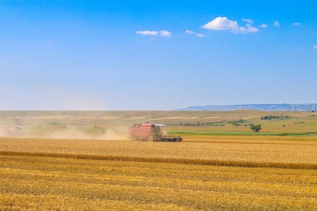 Комбайн работает в поле. зерноуборочный комбайн сельскохозяйственная машина для сбора урожая золотой спелой пшеницы.