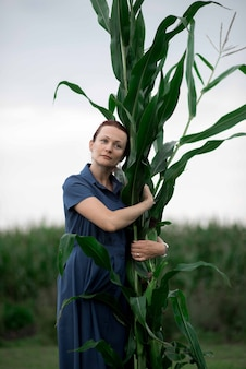 Сбор кукурузы, женщина рука урожая на поле