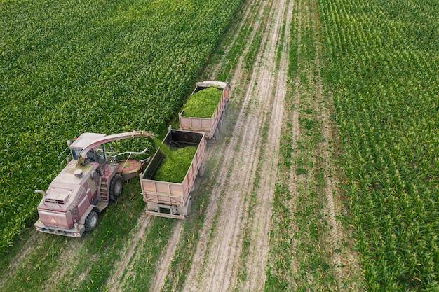 コンバインを使用して畑からトウモロコシを収穫する