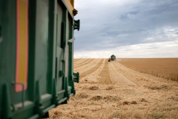 Уборочная техника для уборки пшеницы в поле. комбайн зерноуборочная сельскохозяйственная техника комбайн зерноуборочный комбайн золотой спелой пшеницы сельское хозяйство