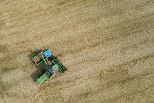フィールドで穀物を収穫します。コンバインから穀物がトラックに注がれます。