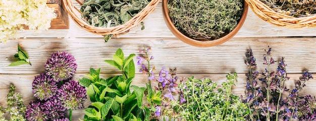Сбор трав длинный баннер целебные растения на белом деревянном фоне