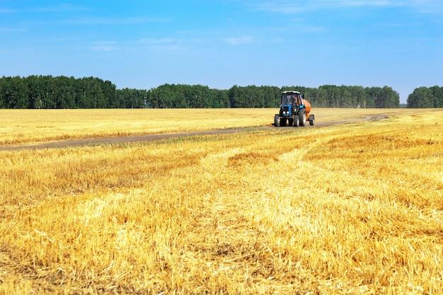 秋の収穫、麦畑、畑道を走るトラクター