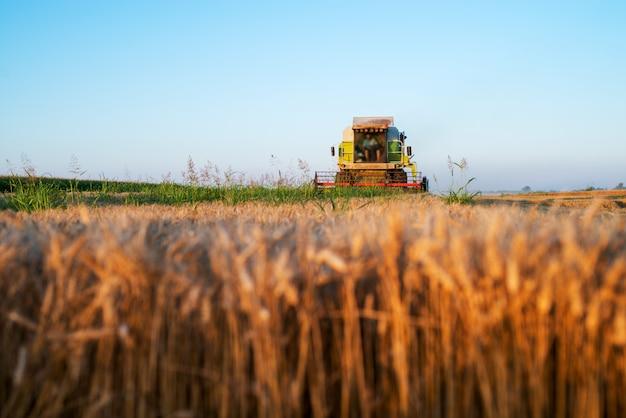 Уборочная машина работает на поле в солнечное утро. сельское хозяйство