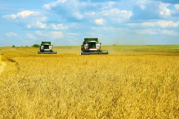 Уборка зерновых культур комбайнами