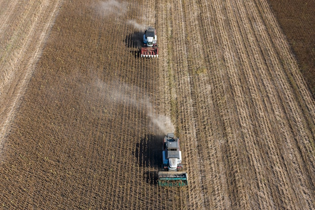 ヒマワリの種の収穫、空撮