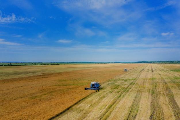 Уборка пшеницы летом. два комбайна работают в поле. зерноуборочный комбайн сельскохозяйственной машины сбора золотой спелой пшеницы на поле. вид сверху.