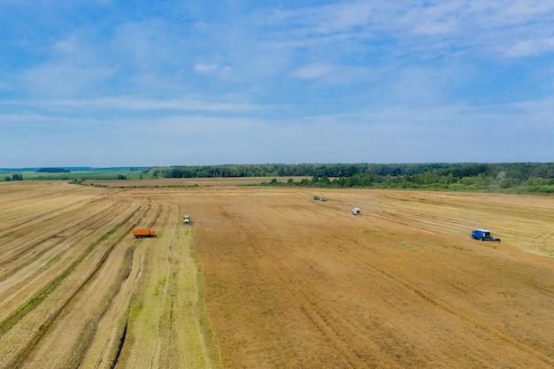 Уборка пшеницы летом