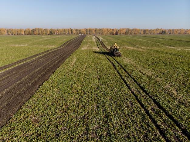 Уборка сахарной свеклы полевой техникой высоты в течение дня
