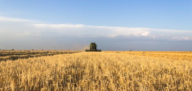 日当たりの良い夏の日に小麦の収穫機