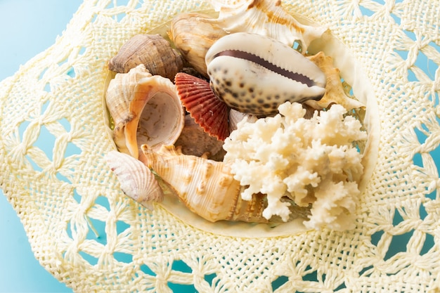 Hat with seashells on blue background