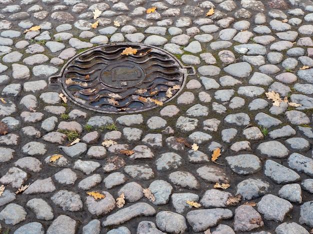秋の石畳の通りでハッチ。