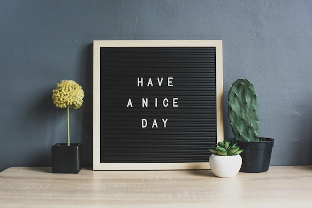 Have a nice day quote on blackboard with cactus, succulent and decorative plant on wooden table