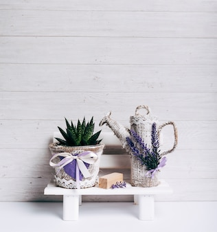 木製の背景に対して白いテーブルに袋ポットと水でhaworthia damata