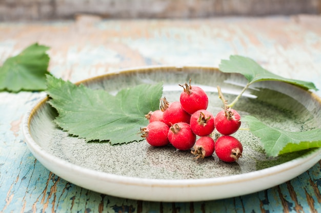 Hawthorn branch with berries and leaves on a plate on a rustic background