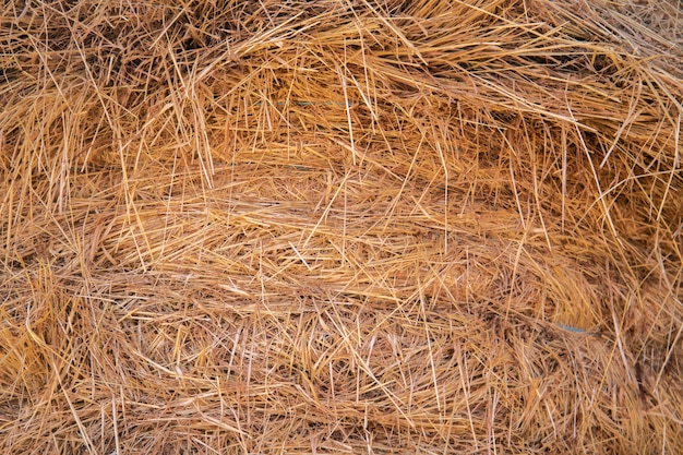 Hay bale for farms with cows horses pigs hens donkeys chicken