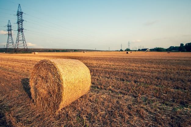 空を背景に大きな高電力線を備えた刈り取られた畑で干し草の俵が転がっている