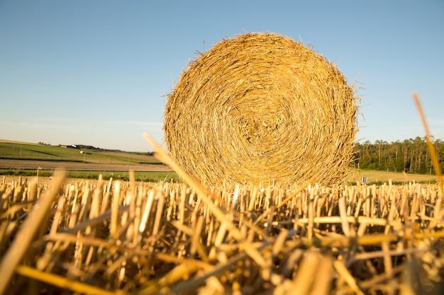 ドイツの収穫された畑の干し草ベール。