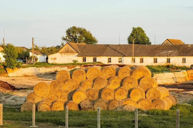 田舎で干し草の俵
