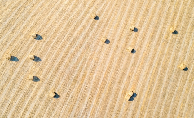 농업 분야에서 건초 bales, 자연 패턴입니다. 바로 위의 공중 파노라마