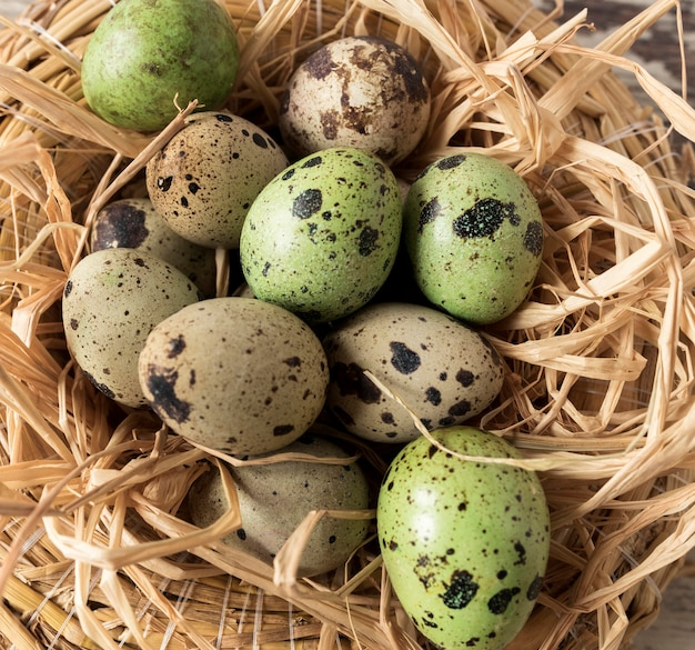 Hay and easter quail eggs