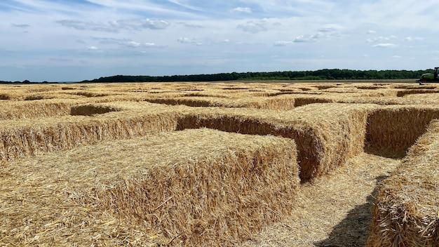 Сено в тюке в солнечный день. пищевой продукт для сельскохозяйственных животных, концепция сельского хозяйства.