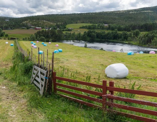 干し草はノルウェーの畑でポリエチレンに詰められています
