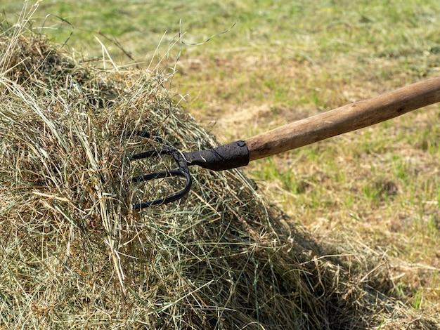熊手に干し草。刈りたての草の山。田舎の生活の概念