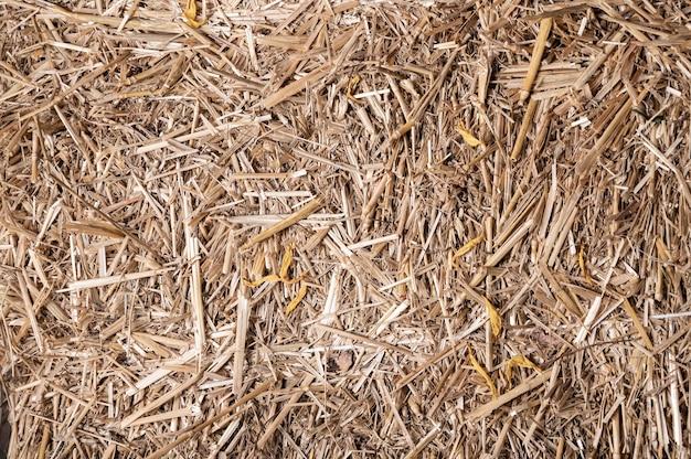 干し草やわらのテクスチャの背景。自然な背景