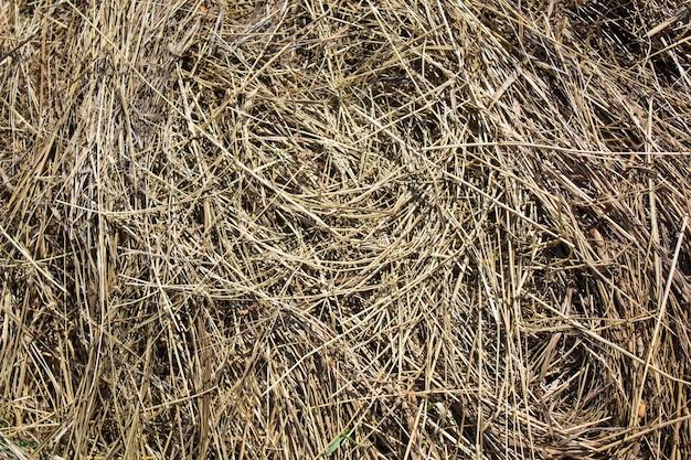 건초 질감 건초 bales는 큰 스택에 쌓여 농업에서 수확