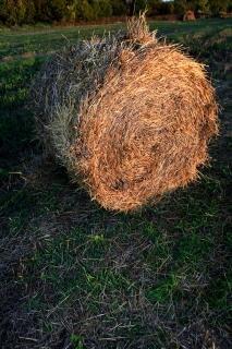 Haystackのhaybales